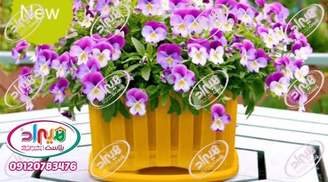 قیمت گلدان پلاستیکی کوچک